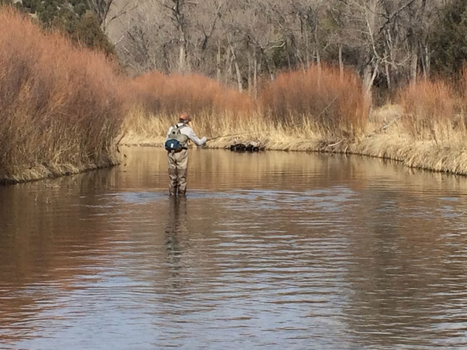 Park Announces Plans for 2020 Fall Fishing Season